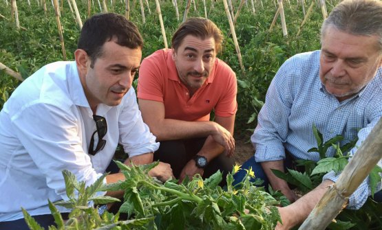 Camarena in the vegetable garden with Jordi Roca