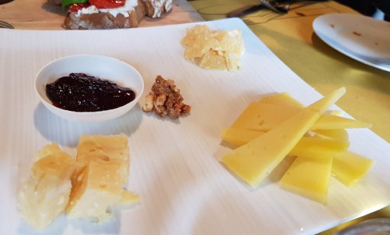 A tasting of Tolminccheese in different periods of maturation