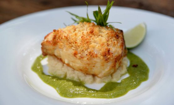 Cod wrapped in walnuts on celery purée and tarragon sauce