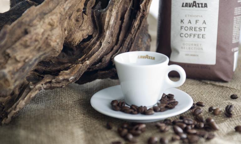 Kafa by Lavazza, an espresso named after the region in Ethiopia from which the Arabica variety origins from (the word coffee comes from here). It is the latest novelty for a brand that has been active since 1895, ready for the great approaching events, from Salone del Gusto to Expo 2015