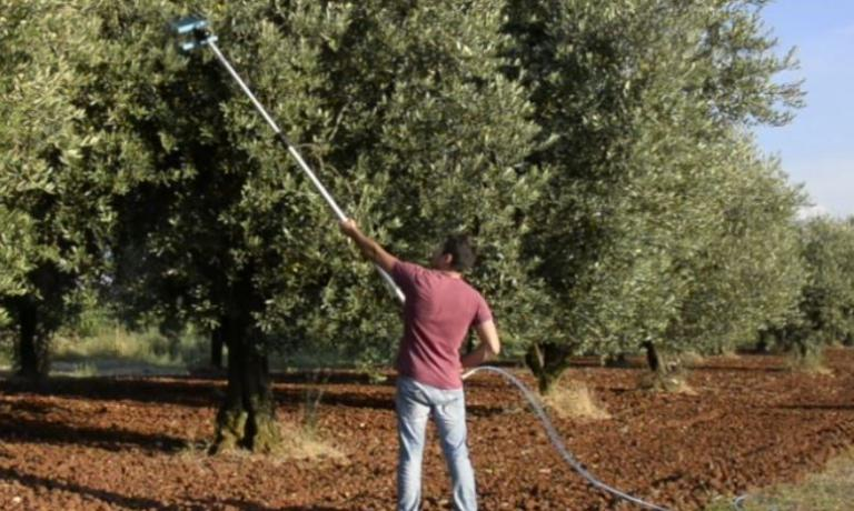 In many cases, olive picking is still done with ancient, traditional, long and demanding methods.�Alpha�is a tool, created by Luca Di Zio, that could help in this task without forsaking the integrity of the fruits