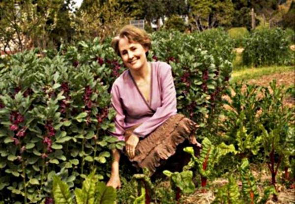 Alice Waters, of the famous Chez Panisse in Berkeley, was among the first to use aromatic herbs and vegetables cultivated in her kitchen garden