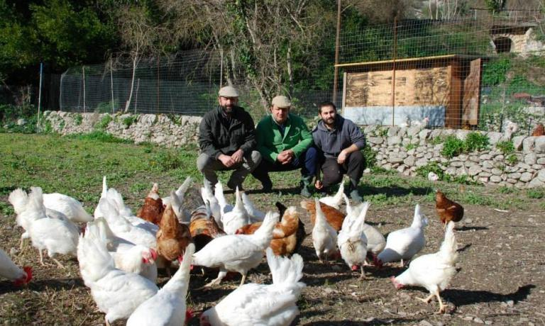 The chef together with Carmelo Cilia (left) and Paolo Moltisanti among the hens in the breeding farm L'Aia Gaia