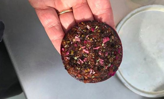 "A disc made of fermented plum pulp with a vegetable ""tartare"" and aromatic spices"