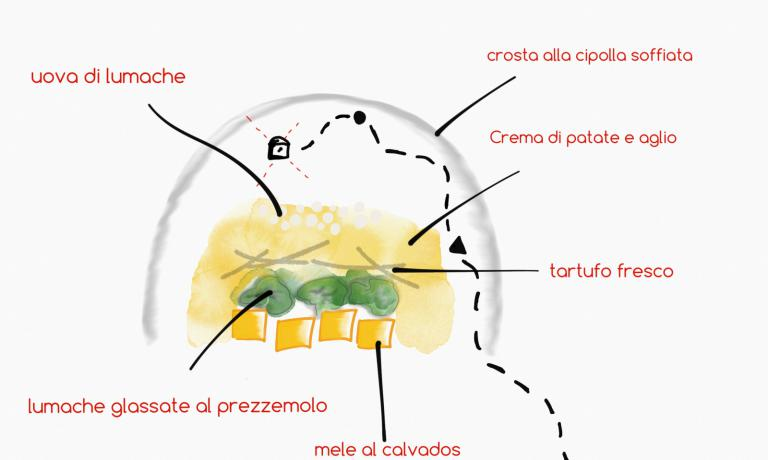 As in a treasure hunt map, here's a drawing explaining the dish that Franco Aliberti presents in the series of 5 recipes we're dedicating to snails