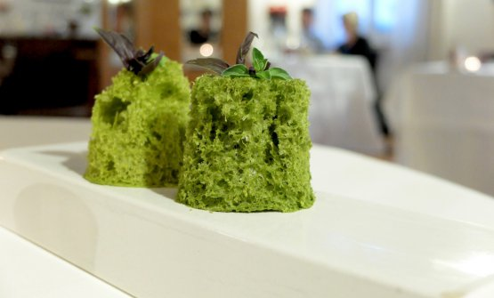 Sponge with wild herbs