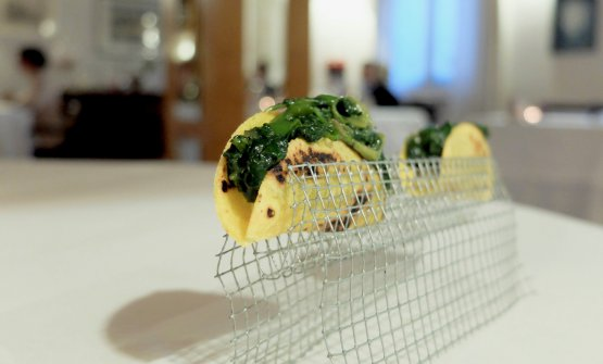 Tacos with ottofile polenta and wild herbs
