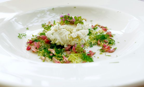 Ricotta, flowers and herbs. Tanio Liotta took the photos of the dishes