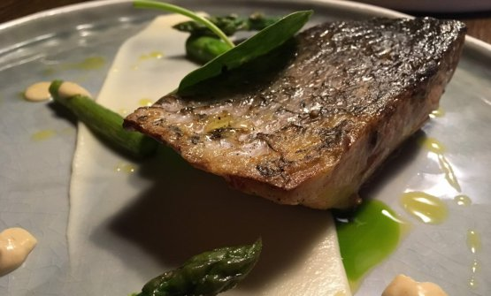 Smoked red drum, cauliflower with hazelnut butter, emulsion of mussels and asparagus
