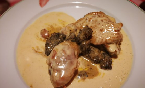 Bresse chicken in cream sauce