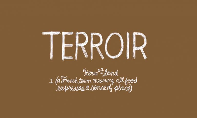 What is terroir and how is this concept developed? This was the main question of the debate at Care's