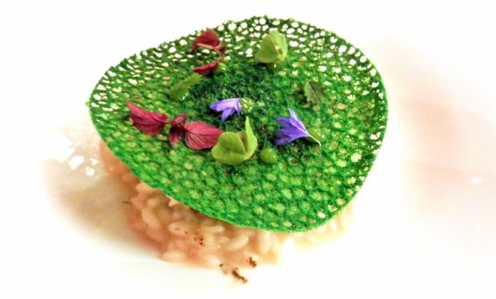 """Risotto Carnaroli """"Ecorì"""", with sea snails, mixed with mugo pine and mountain butter from Maso Vallin"""