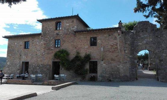 La Vernaccia domina su San Gimignano dalla Rocca