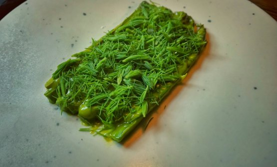 Asparagus, cream of pistachio, pine shoots