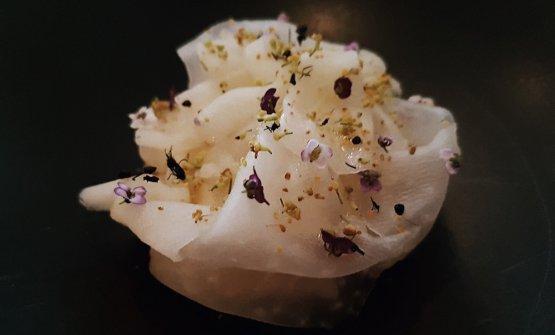 Sturgeon, ants, dill flowers
