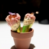 Savoury cone with veal steak tartare, marjoram and salmon roe