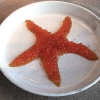 Sea star, that is to say Cured trout roe and eggs, the emblem dish of this new era. They recommend moving the teaspoon from the heart to the edges of the tentacles. Aesthetics win over taste